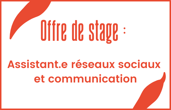 stagiaire-rs_site_2